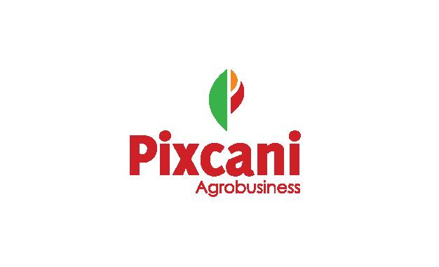 Pixcani - brand by Ocus